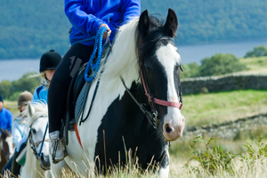 Horse Riding (c) Dave Willis and Cumbria Tourism